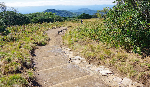 Craggy Gardens Trail New