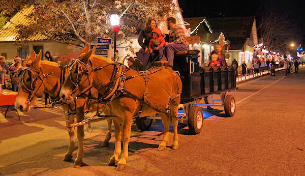 Dillsboro Festival of Lights Wagon Ride