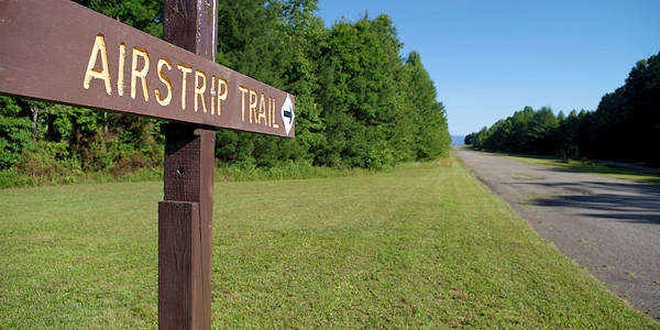 DuPont State Forest Airstrip Trail