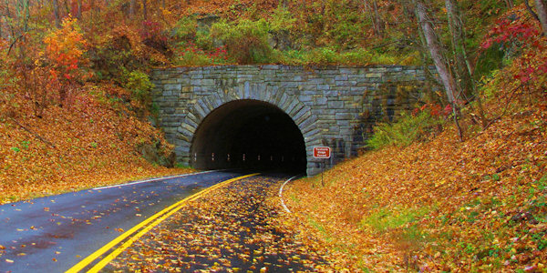 Parkway Tunnel Fall Color