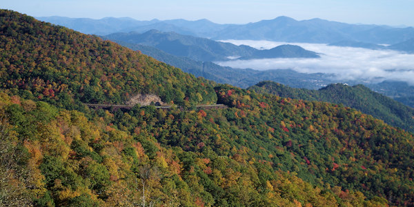 Fall Color on Blue Ridge Parkway