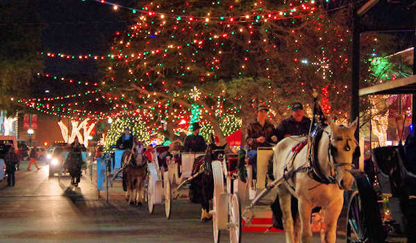 Forest City Carriage Rides