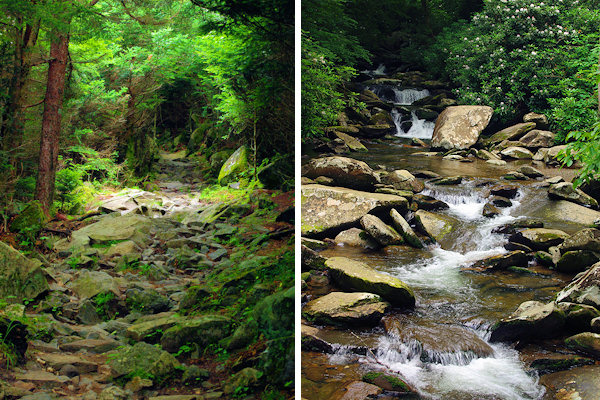 Great Smoky Mountains National Park Vacation Guide North
