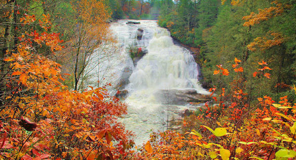 High Falls, Fall color