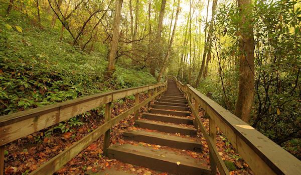 Things To Do In Cherokee Nc >> Mingo Falls Cherokee