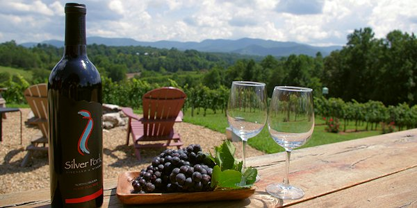 Morganton Wineries