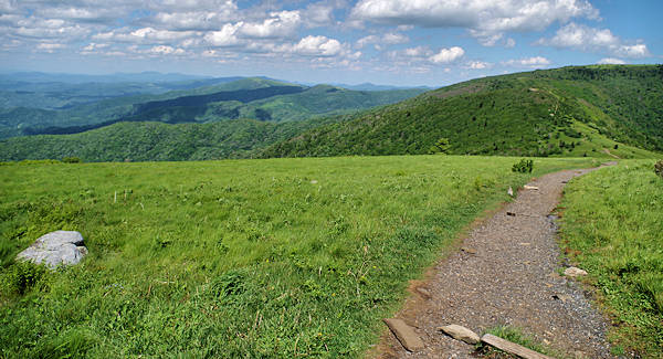 Roan Mountain Appalachian Trail