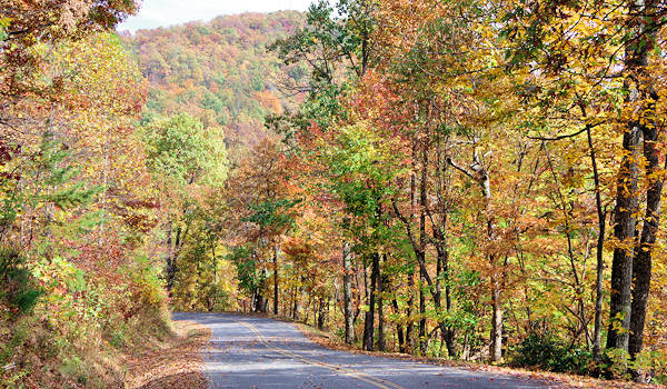 White Oak Mountain Road