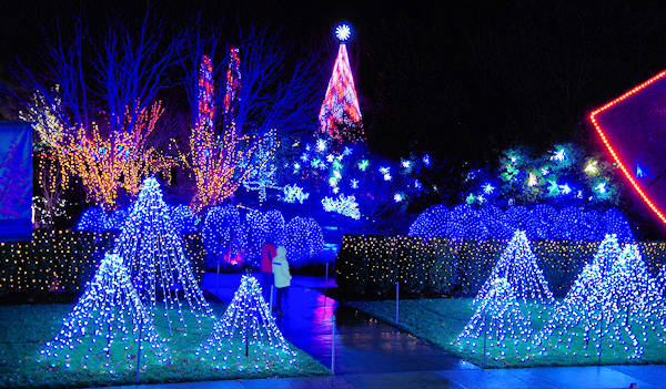 Winter Lights, NC Arboretum Asheville - Winter Lights At NC Arboretum Photo Tour