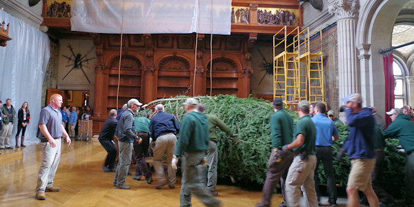 Christmas Tree Raising at Biltmore House