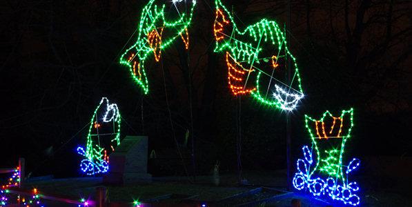 Lake Julian Festival of Lights, Asheville