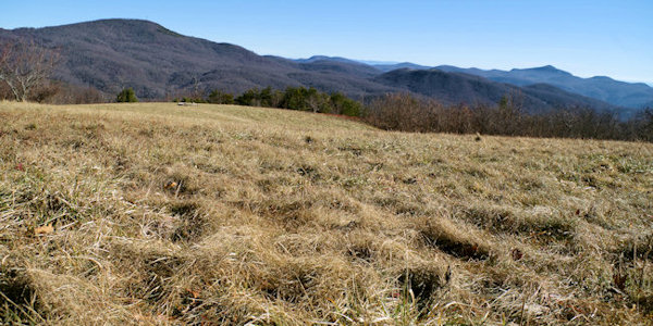 Trombatore Trail to Blue Ridge Pastures